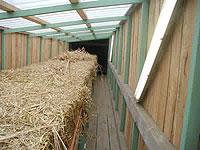 Les herbes pour laugmentation de la puissance la liste des herbes médicales